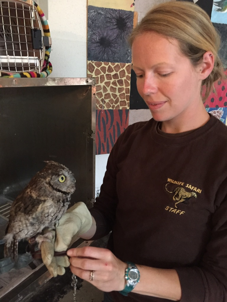 Keeper Julianne gets Kotori ready for an outreach